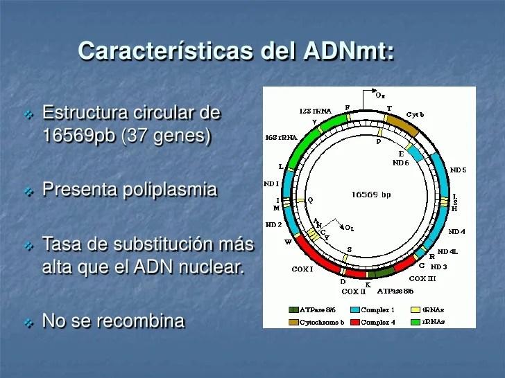 slide-3-728.jpg?cb=1365699012