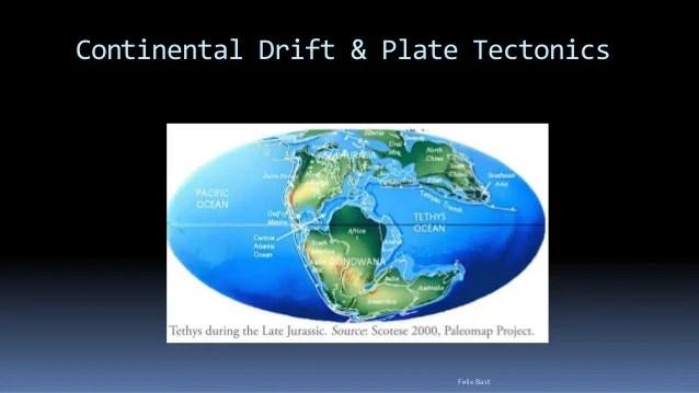 Theory Continental Drift Evidences 4