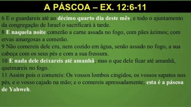 A PÁSCOA – EX. 12:6-12 6 E o guardareis até ao décimo quarto dia deste mês, e todo o ajuntamento da congregação de Israel ...