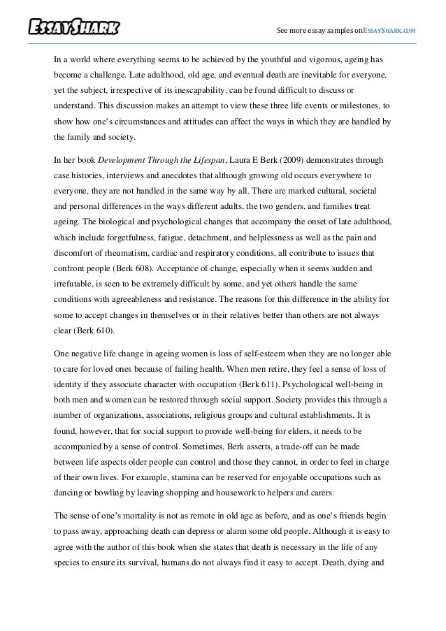 interpretive essay examples Section 1 the child that i am working with is a four year old female named briniyah she is in preschool and learning new letters each day briniyah is my daughter.