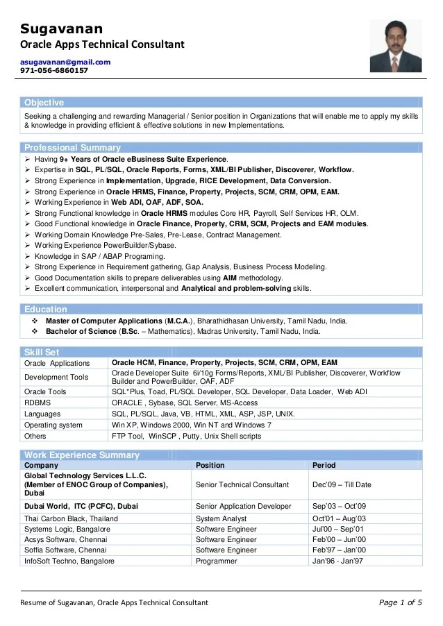 technical consultant resume wong solo developer