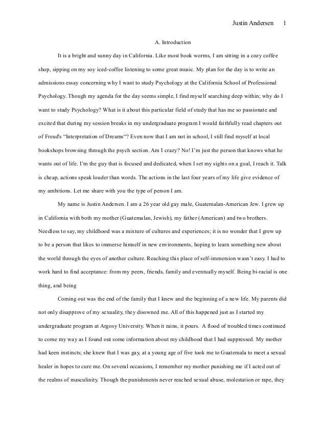 High School Admission Essay Examples Resume High School Graduate