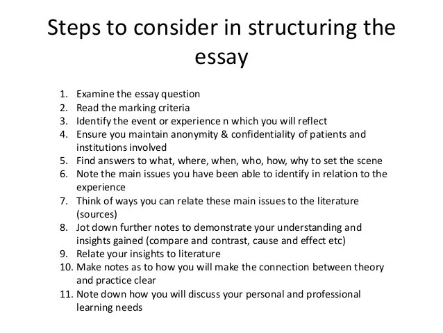 essay example sample college application essays template eko  5 page essay example sample essay help org 5 page essay cv resume