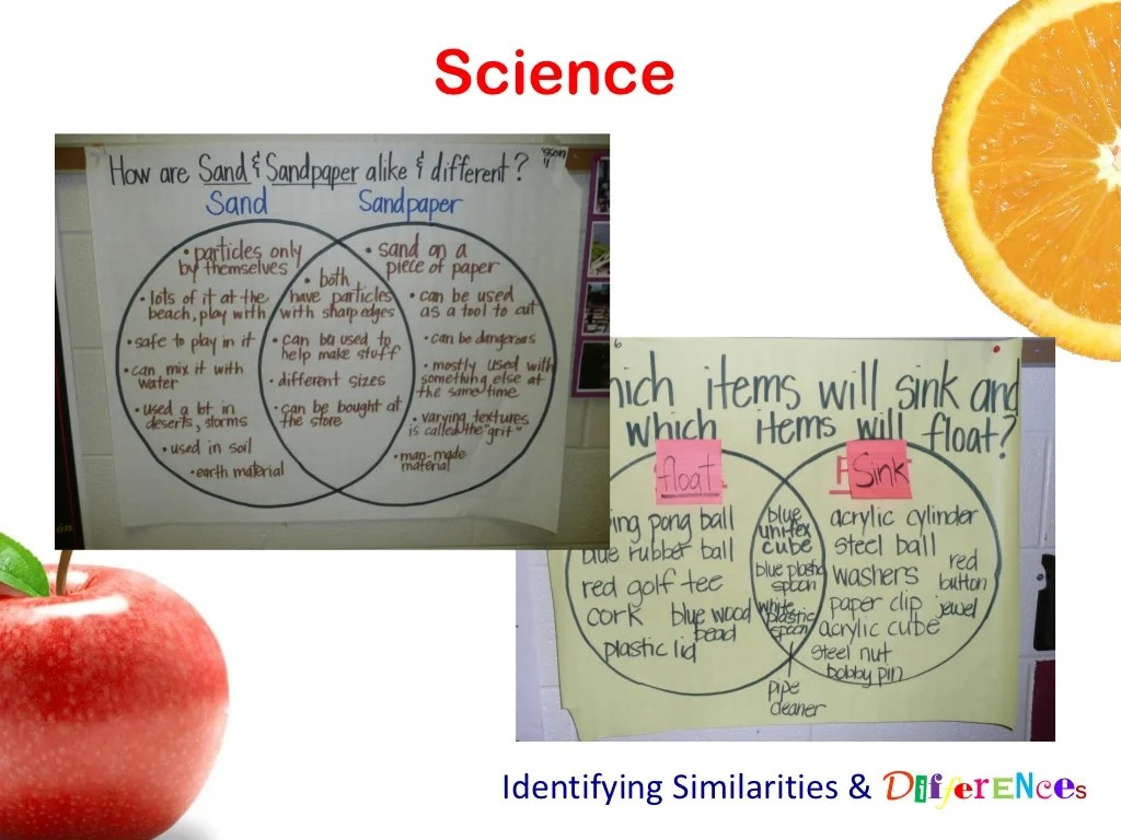 Science Identifying Similarities Amp Differences