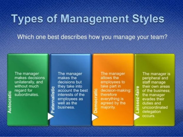 Which one best describes how you manage your team?