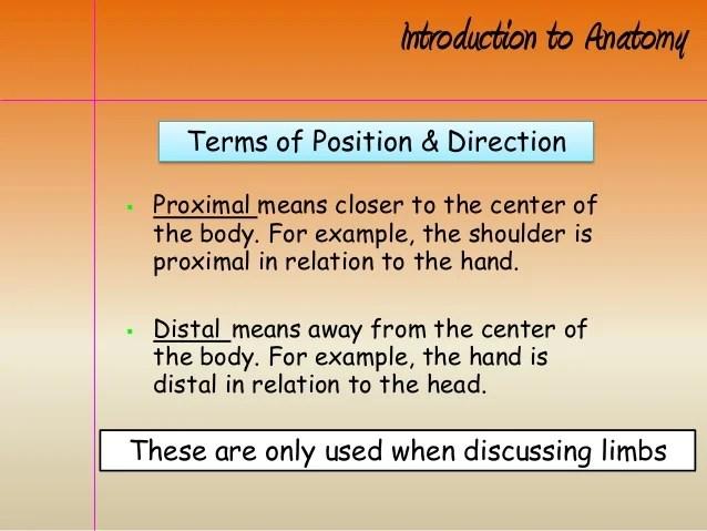 Intro to anatomy