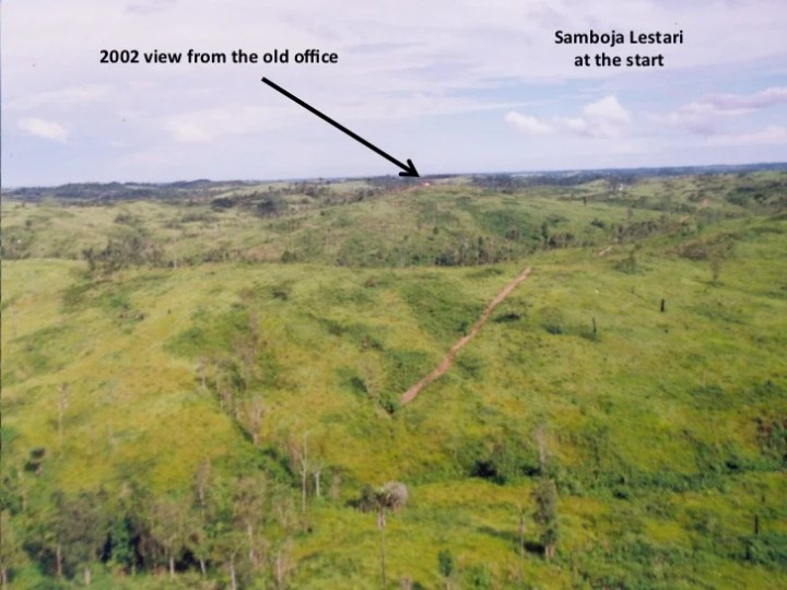 An Effort to Restore from Imperata Grassland to Secondary Forest in S…
