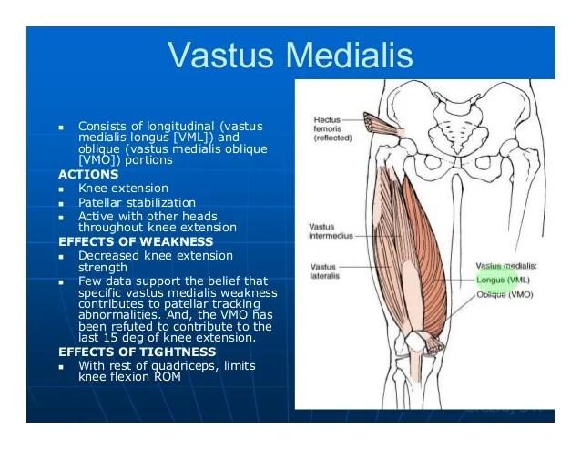 Vastus Lateralis Stretch
