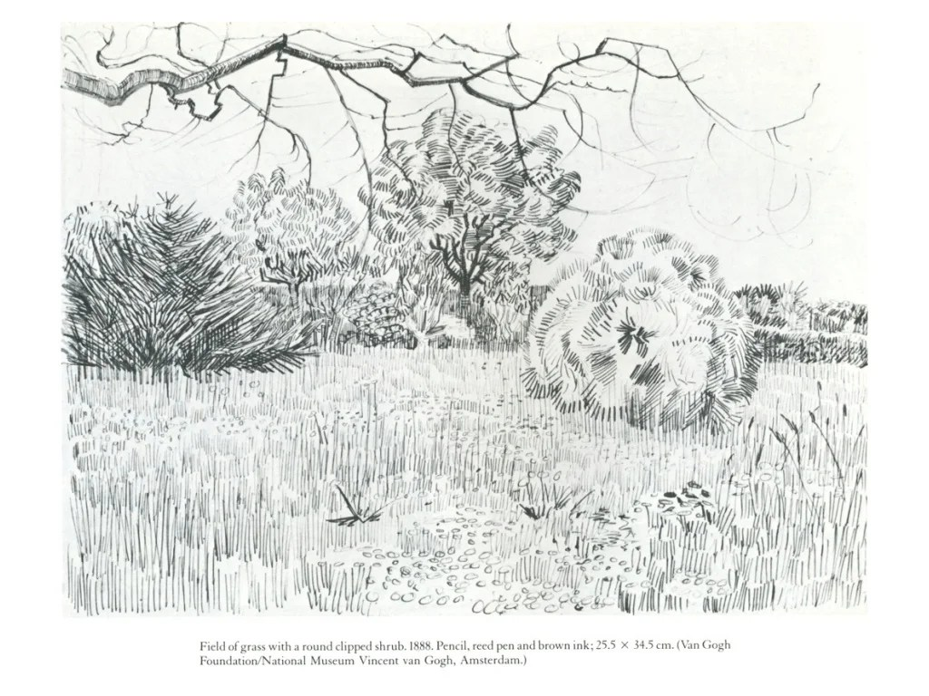 Landscape Line Drawings Sketch Examples