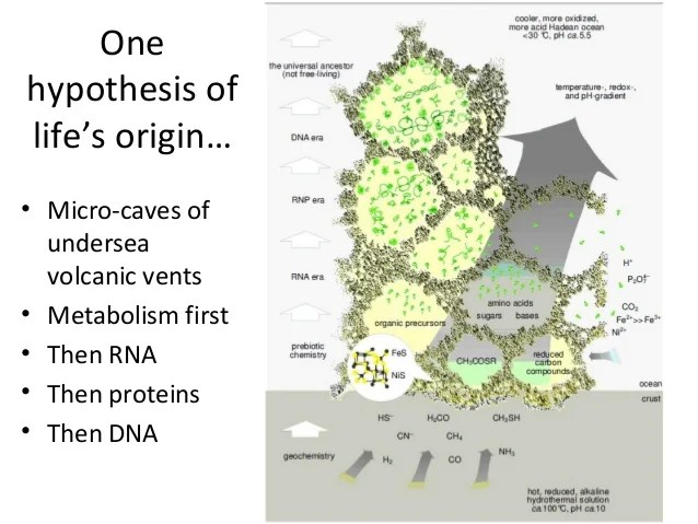 Image result for metabolism first hypothesis images