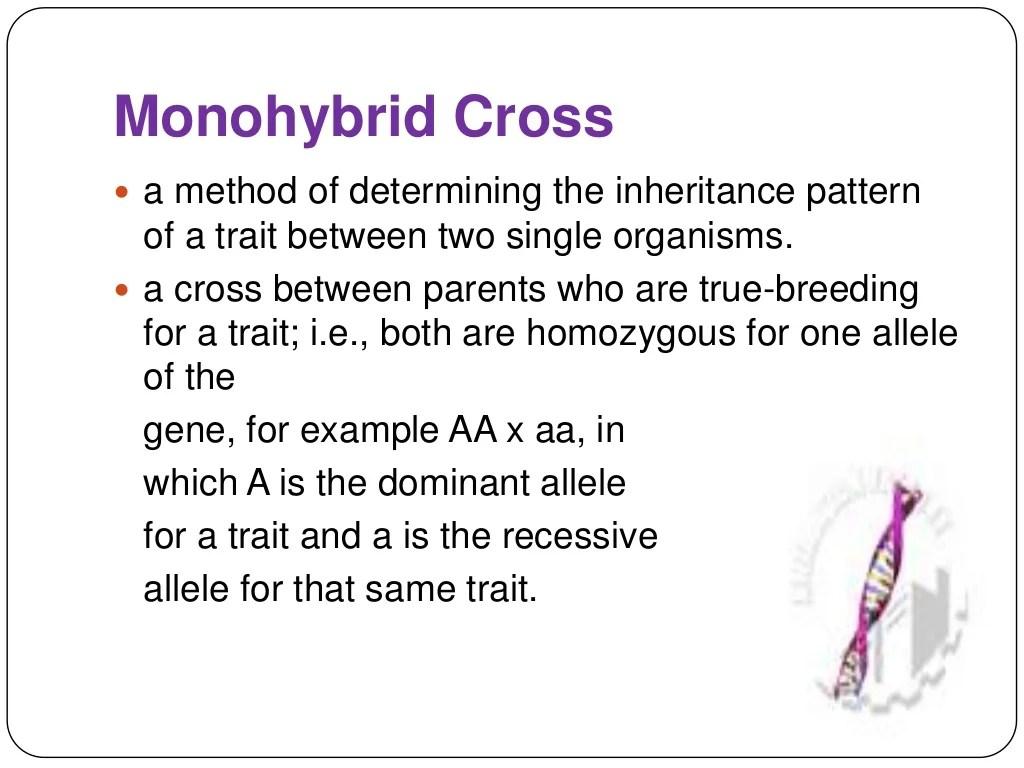 Monohybrid And Dihybrid Cross 1