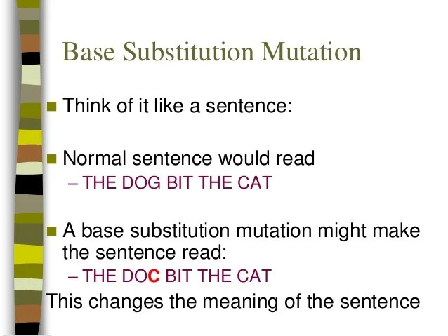 point mutations silent mutations