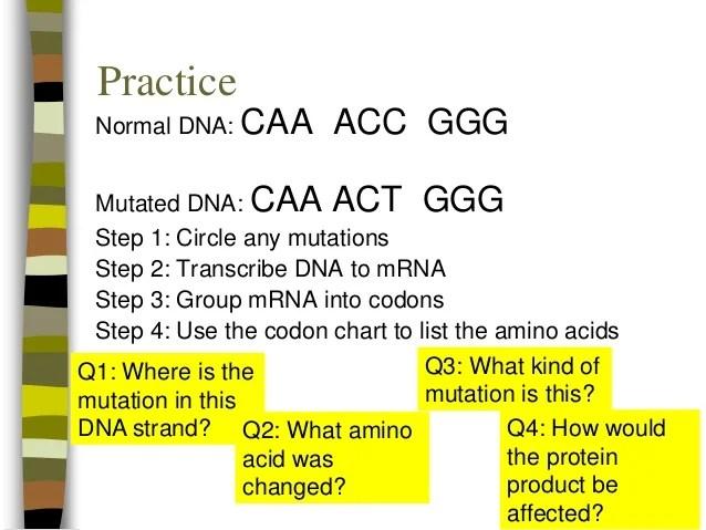 Codon Mrna Circle Chart