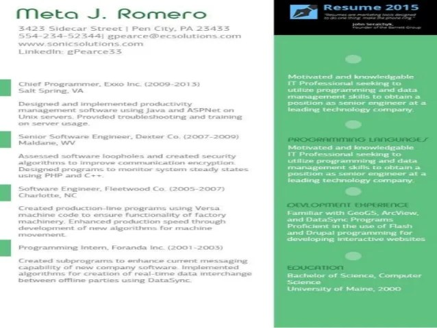 Best Resume Layout 2015. Best Professional Resume Layout Examples
