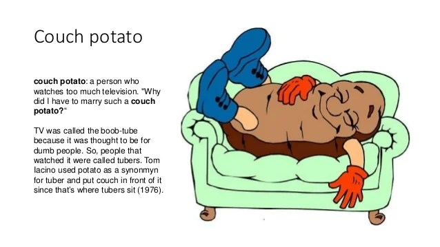 Image result for couch potato idiom