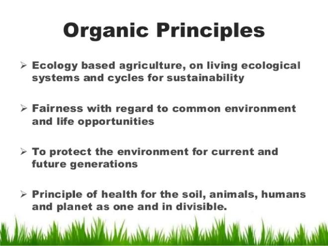 La agricultura ecológica puede ayudar a salvar al mundo