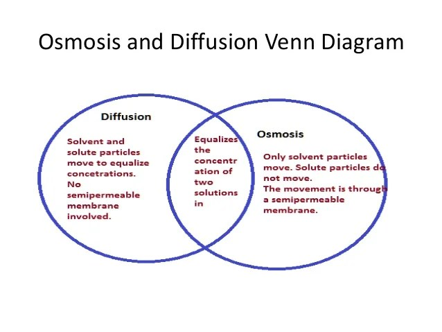 Difference Between Active And Passive Transport Venn Diagram