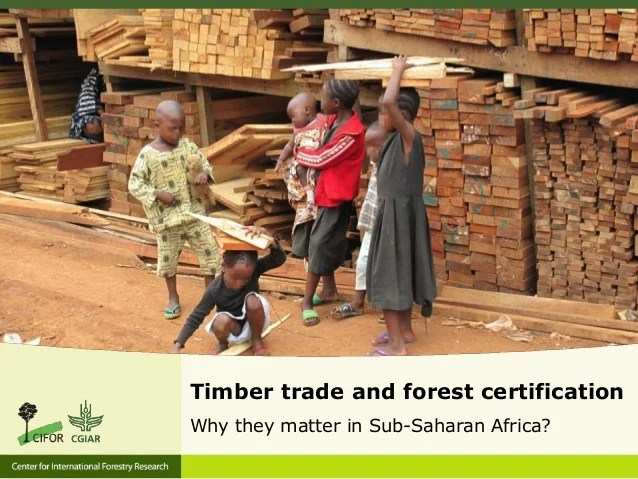 Forest trade