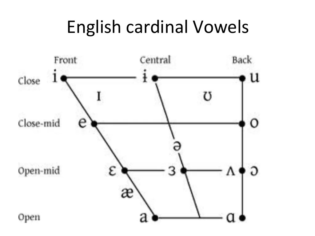 Manner Of Articulation Phonetics And Phonology