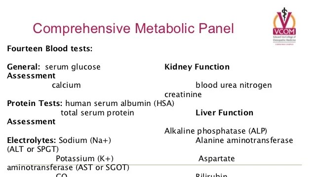 Basic Metabolic Panel Fishbone