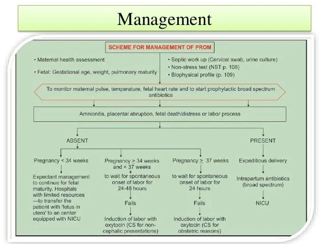 Premature Rupture Of Membrane Case And Topic Ll Dr Jakia