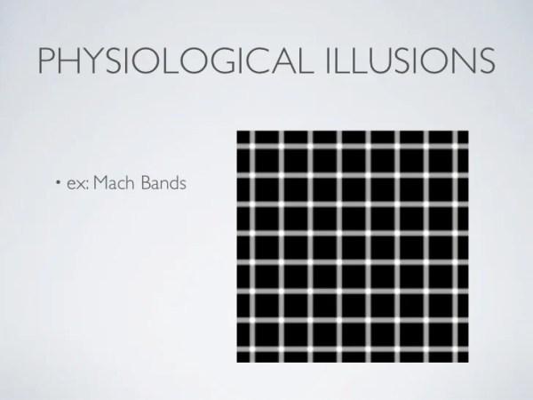 optical illusions school presentation # 0