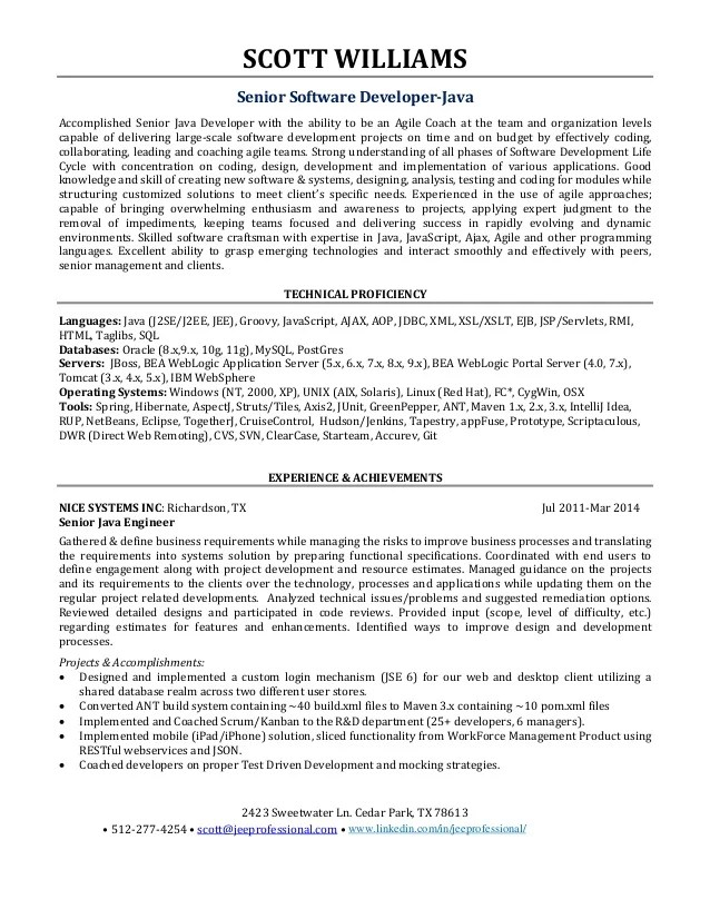 Curriculum Vitae Java Developer Sample. it project manager cv ...