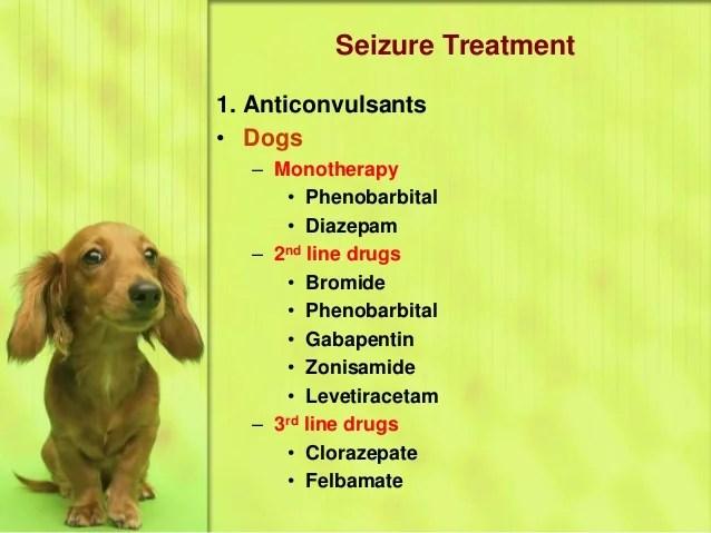 Disease Distemper Dogs