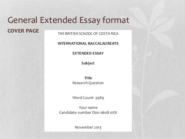 essay page counter