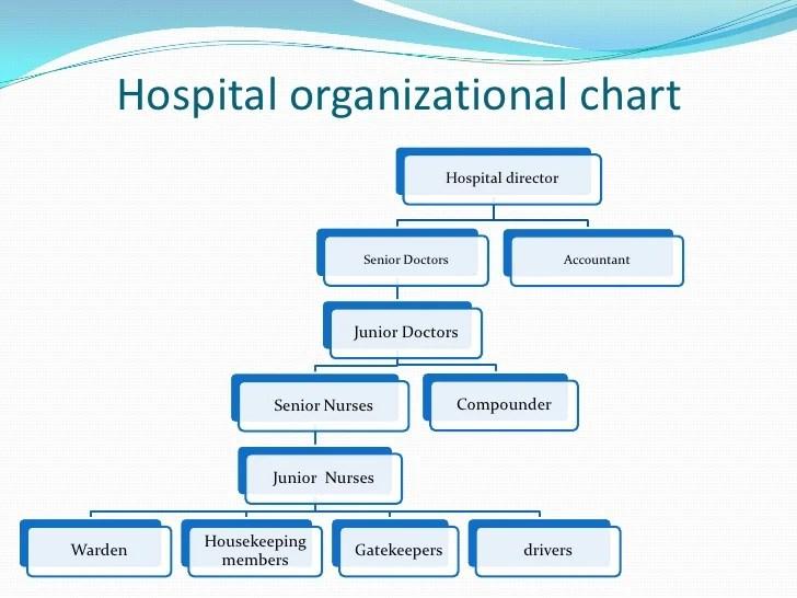 Clinic Organizational Chart