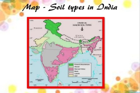 Major soil types 4k pictures 4k pictures full hq wallpaper the formation of soil is related soil types cont scientists classify the different types of soil into major groups on the outline map of india identify altavistaventures Gallery