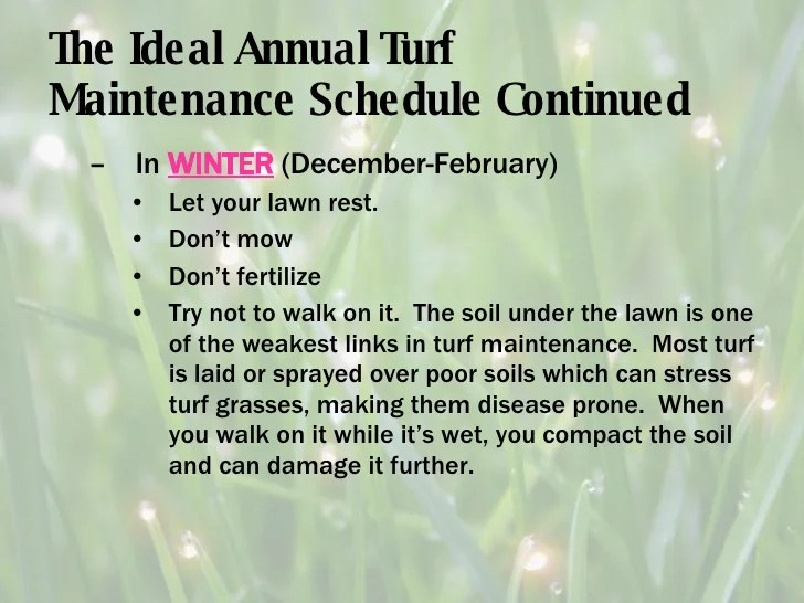 Turf Maintenance For The Pacific Northwest