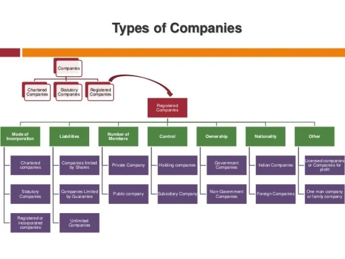 Classification and Registration of Companies and types of companies