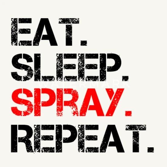 Acryl Spray Rayher