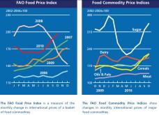 Cresterea indicelui preturilor alimentelor