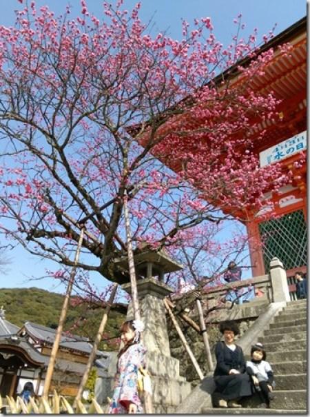 14_thumb7 Kyoto-清水坂 好吃好逛