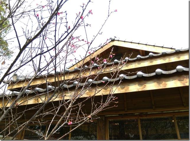15_thumb4 台中-小書房 武道館旁鬧中取靜的飲茶空間
