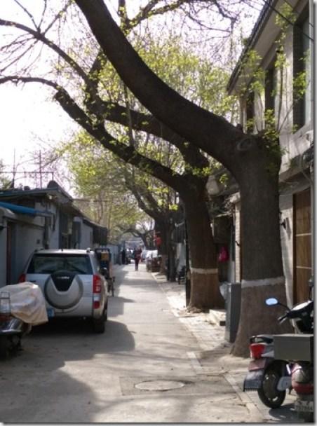 07_thumb5 Beijing-北京胡同的小天地 南鑼鼓巷