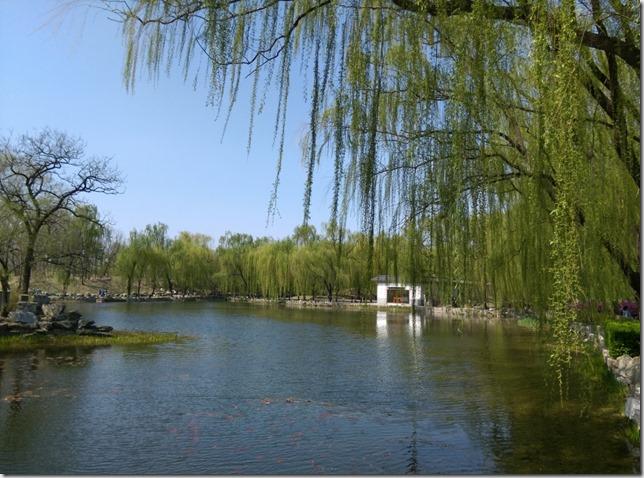 08_thumb11 Beijing-圓明園 英法聯軍毀的差不多了 但還是被列入世界文化遺產
