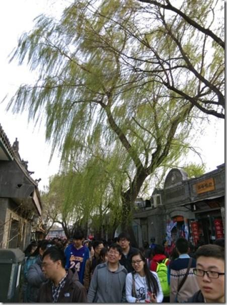 12_thumb4 Beijing-北京胡同的小天地 南鑼鼓巷