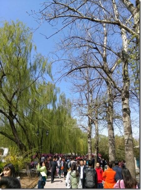 12_thumb8 Beijing-圓明園 英法聯軍毀的差不多了 但還是被列入世界文化遺產