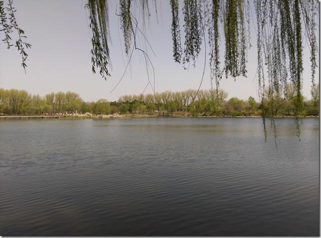 18_thumb1 Beijing-圓明園 英法聯軍毀的差不多了 但還是被列入世界文化遺產