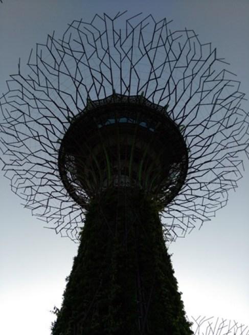 gardenbythebay01 Singapore-IndoChine-Gardens by the Bay中SuperTree上享受美食享受美景