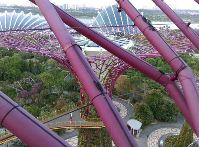 gardenbythebay14 Singapore-IndoChine-Gardens by the Bay中SuperTree上享受美食享受美景