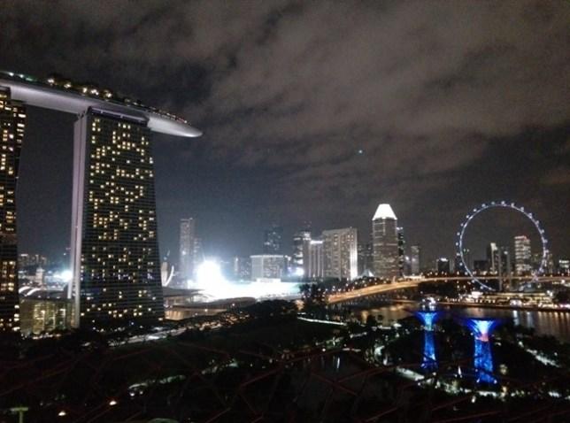 gardenbythebay35 Singapore-IndoChine-Gardens by the Bay中SuperTree上享受美食享受美景