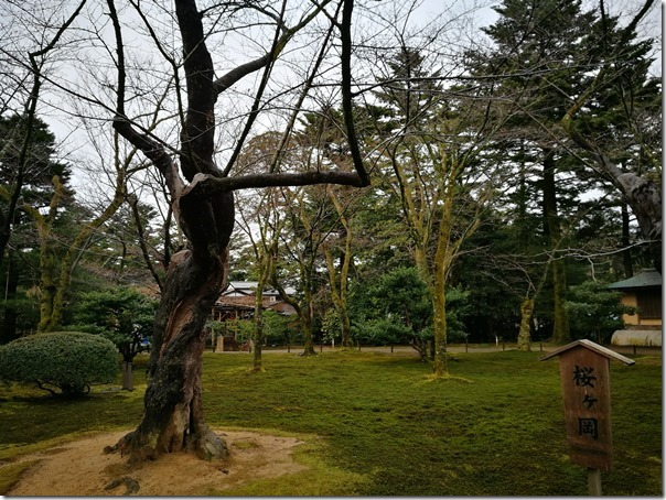 kenrokuen5005_thumb Kanazawa-日本三大名園 二訪兼六園 金澤必訪