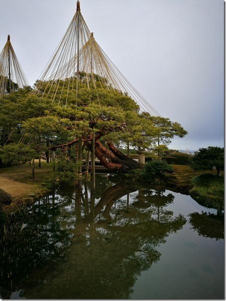 kenrokuen5012_thumb Kanazawa-日本三大名園 二訪兼六園 金澤必訪