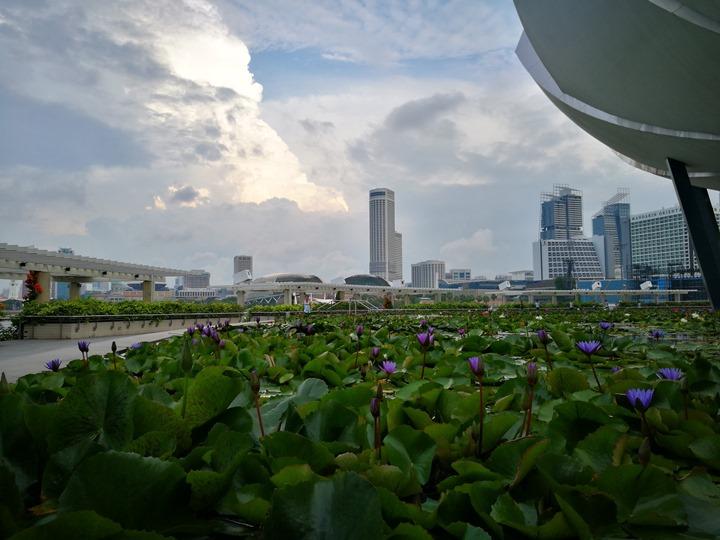 marinabay38 Singapore-Marina Bay晨景 感受新加坡最美的濱海灣