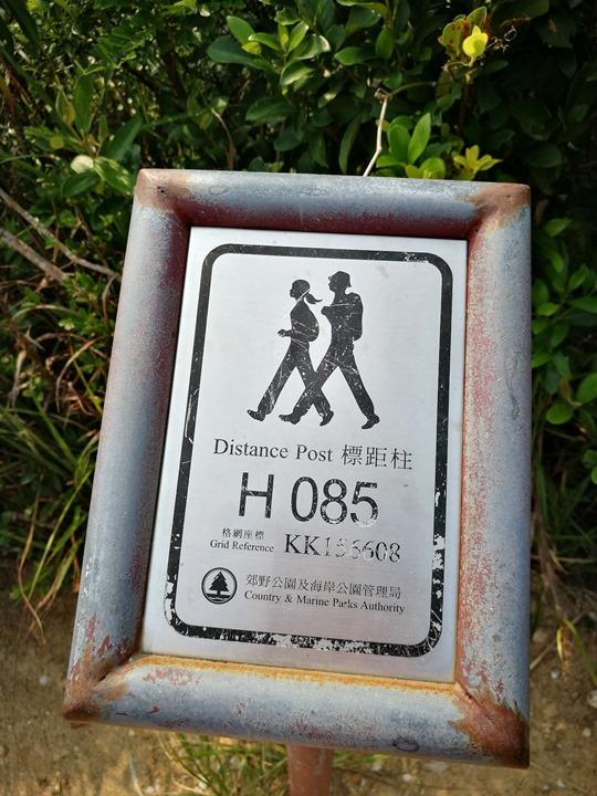 dragonbackmt.09 HK-亞洲最美市區行山徑-龍脊(港島徑第8段)