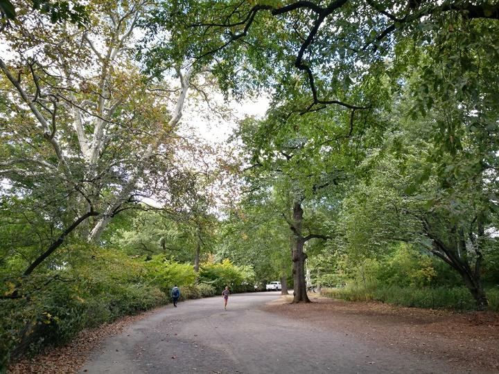 centralpark07 New York-果真大蘋果之紐約真好玩 中央公園 躺著曬太陽也愜意的好所在
